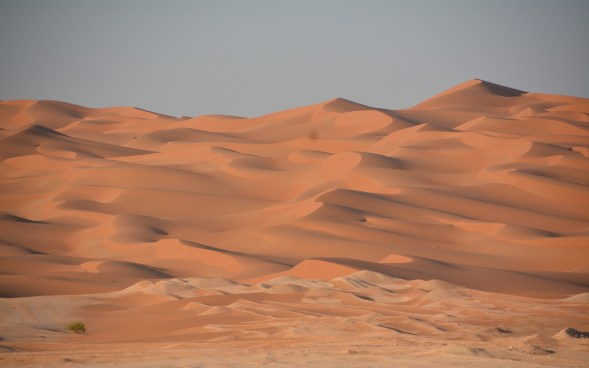 Dunes on the edge of the Empty Quarter, at the south-east corner of UAE...