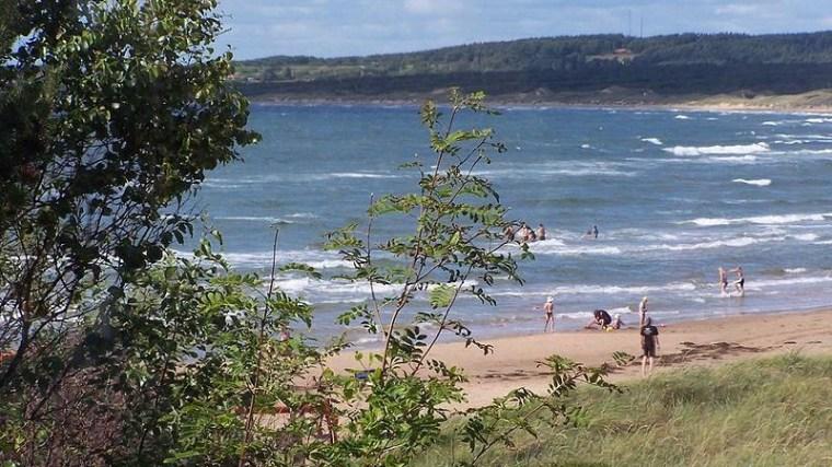 Tylösand Beach