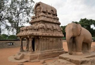 Nakul and Sehdev's Ratha