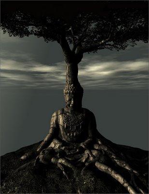 https://i1.wp.com/mytree.tv/wp-content/uploads/2011/05/buddha-tree.jpg?w=640
