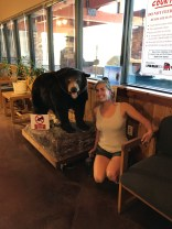 Another bear friend!
