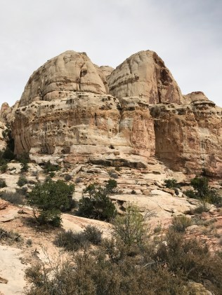 Beautiful desert rocks