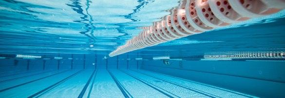 yeronga-park-swimming-squads
