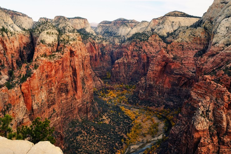Looking North from Angels Landing