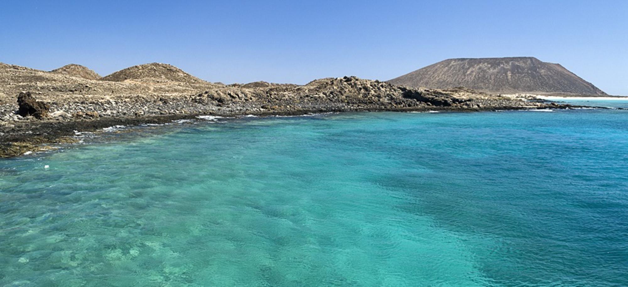 Fuerteventura-lobos