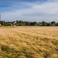 Den skånska landsbygden