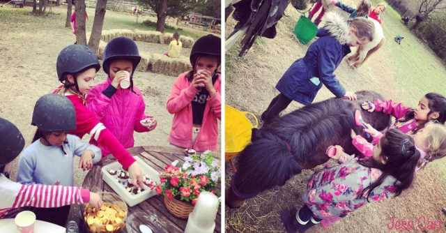 Sunday Pony Fun Club with Little Forest Ponies!