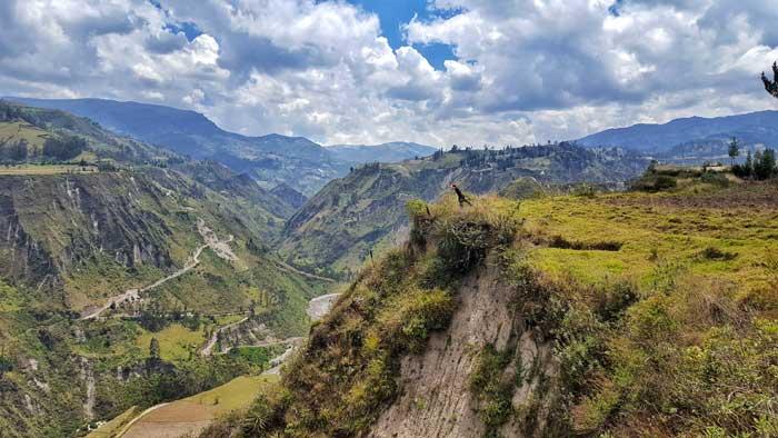 greenery-at-ecuador