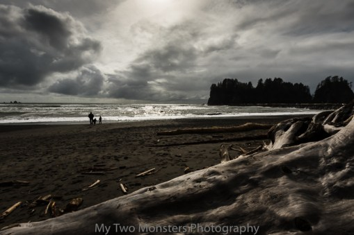 First Beach, Olympic Peninsula