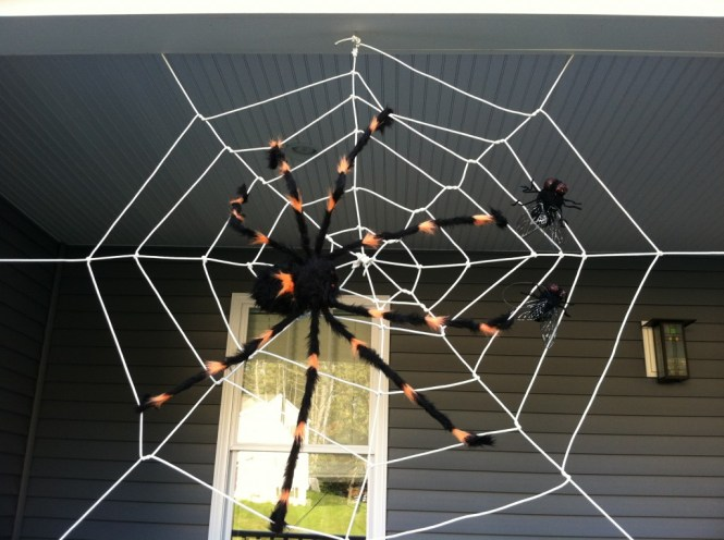 Cool Red Spider Web On The White Door A Modern Decor