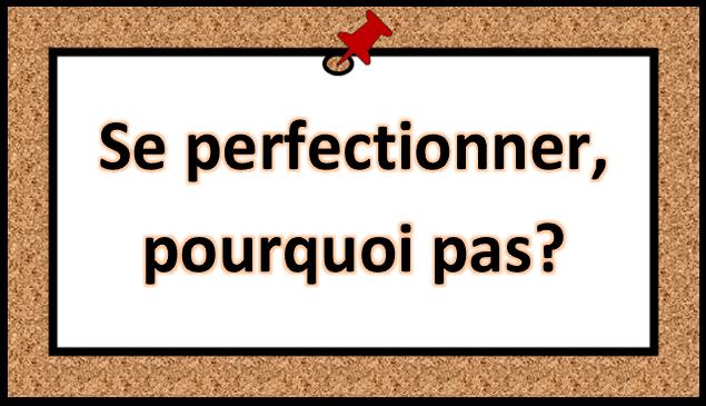 Conseil #4 : Se perfectionner, pourquoi pas?