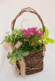 Pink Door Basket