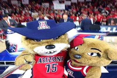 Arizona mascots