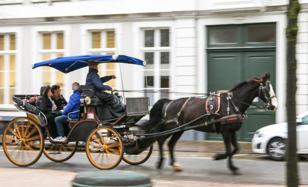 horse carriage ride bruges