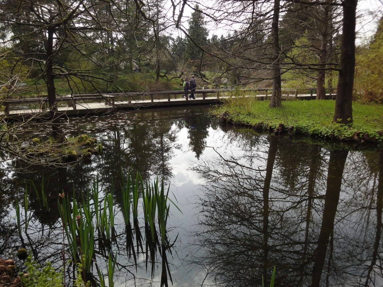 溫哥華旅遊|春遊凡杜森植物園