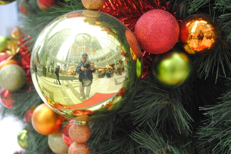 {四季節慶} 溫哥華聖誕樹群像