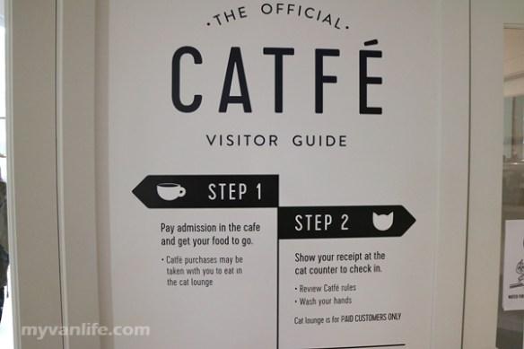 CafeIMG_0420Catfe