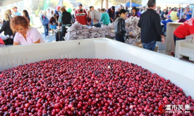 eventimg_7640cranberryfest