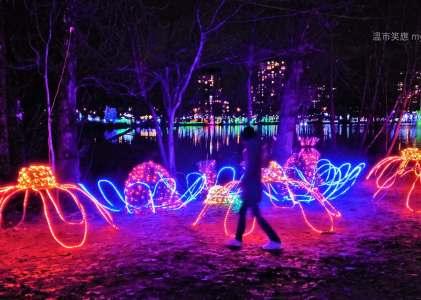 溫哥華旅遊|夜色中的1.2公里環湖聖誕燈會