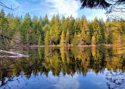 溫哥華旅遊|Mundy Park 踏雪尋湖