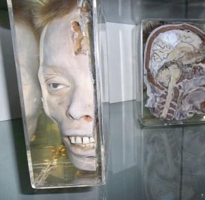 forensics-museum