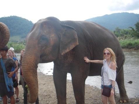 elephant-bath