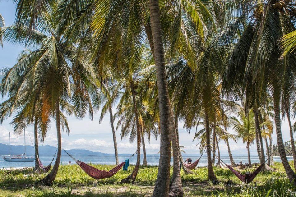 paradise hammock