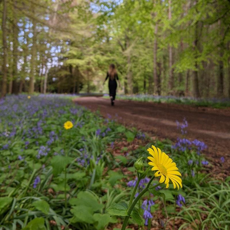 walk to crawford priory