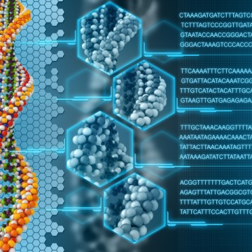 Scientists Discover That DNA Can Be Reprogrammed With Words And Frequencies