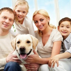 Veterinary Care Services For Dogs To Prevent Them From Health Risks