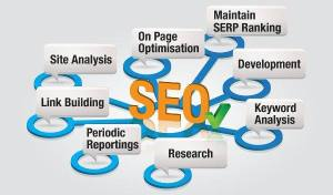 Expert SEO company after understanding their competence
