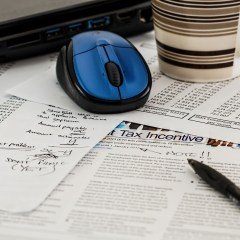COMPLETE YOUR PROFESSIONAL YEAR IN ACCOUNTING