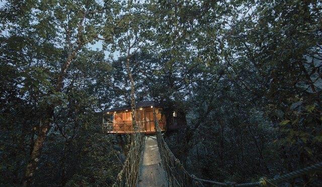 Tree House Fun Thing To Do in Kerala