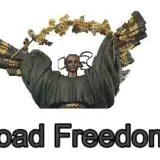 Our Best Guide to Download Freedom Apk