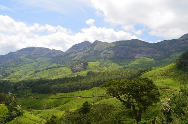 romantic places to visit in munnar