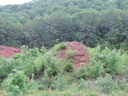 In addition to the red rock in the foreground, you can see the deep forested expanse typical of this part of Missouri. The wood from the forest was essential in the production of iron at the iron works.