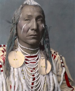 Red Wing, Apsaroke Crow Native American 1908