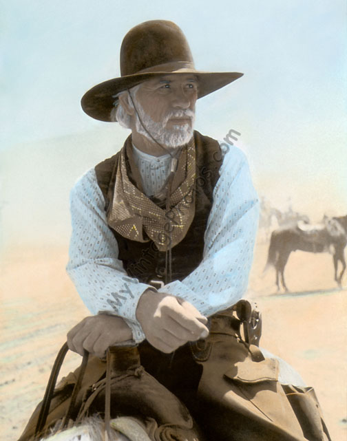 Tommy Lee Jones Lonesome Dove 1989