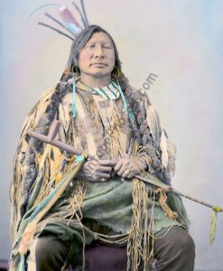 Iron Horn, Hunkpapa Sioux Native American 1872