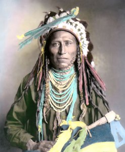 Heebe-tee-tse, Shoshone Native American Indian 1899