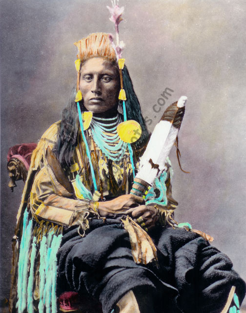 Chief Medicine Crow, Apsaroke Crow Native American Indian 1880