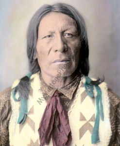 Singing Goose, Dakota Rosebud Native American Indian 1912