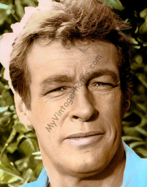 Russell Johnson, Gilligan's Island 1960s