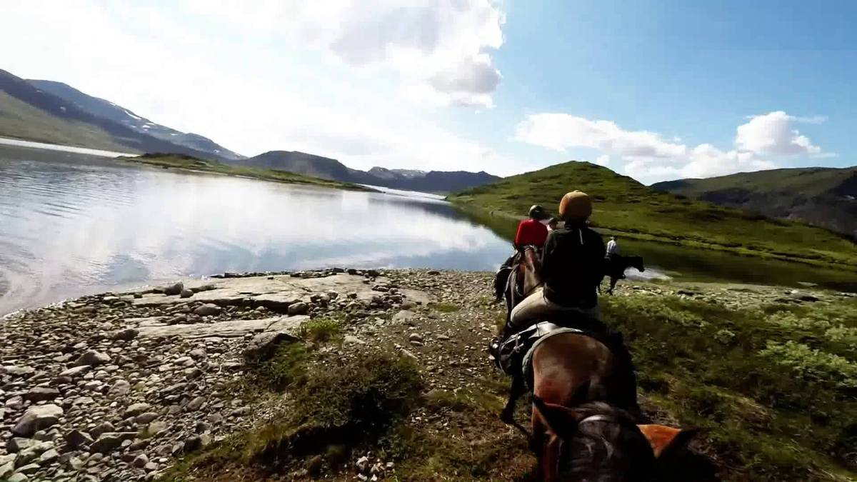 Horseback Riding: Norway