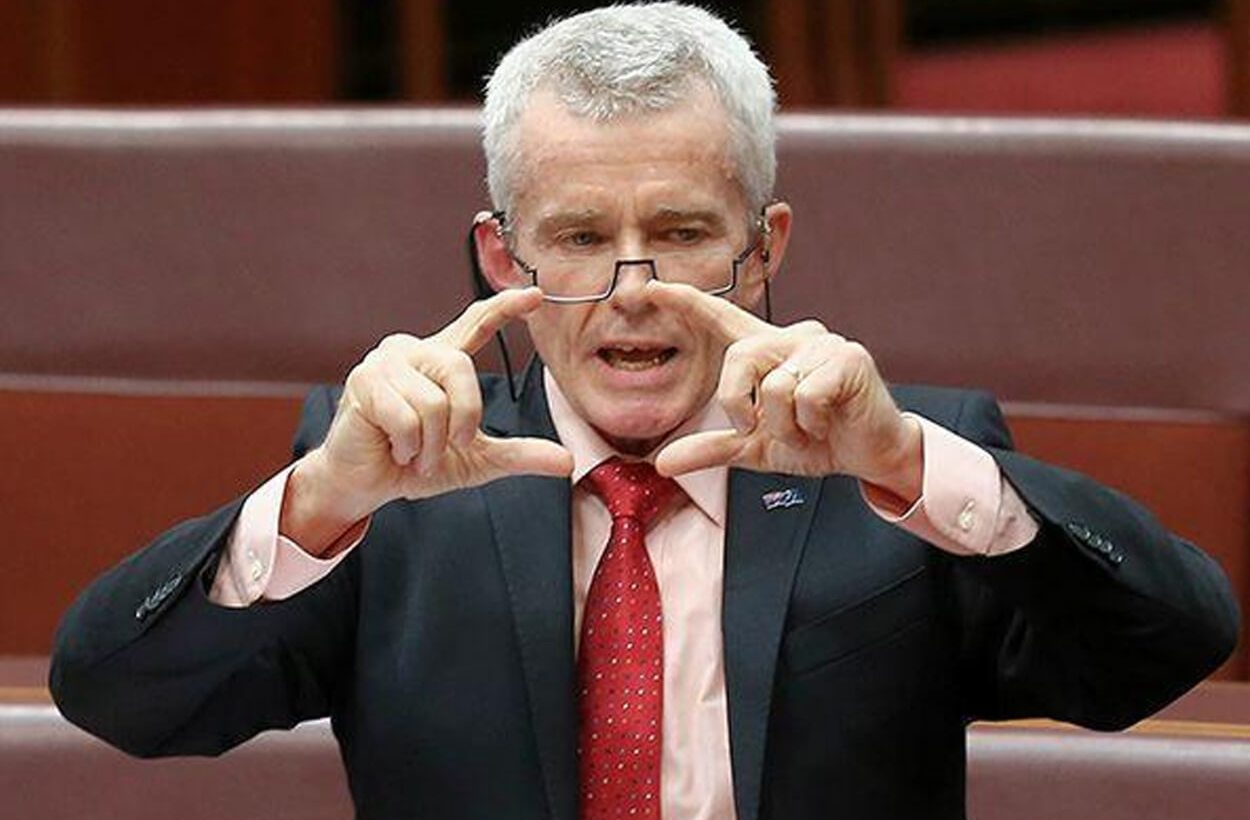 One Nation's Malcolm Roberts wants migration more than halved