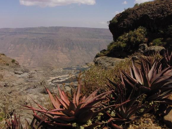 Ethiopië natuur vallei begin van de nijl