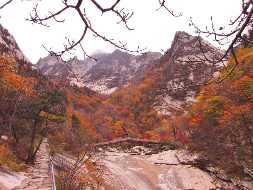 natuur noord-korea