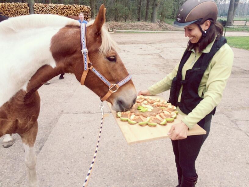 verjaardagstaart paard