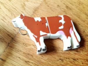 USB Stick vorm koe