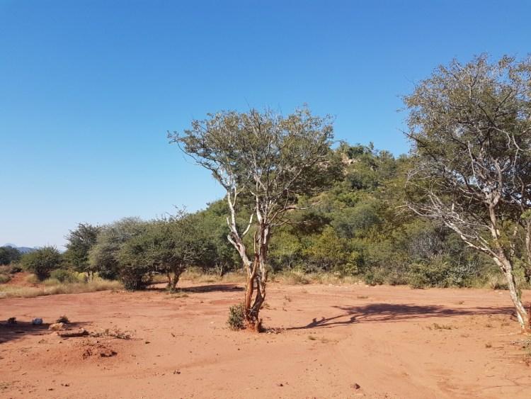 Zoomlens telefoon Zuid Afrika
